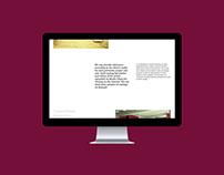 Stopcasting - casting agency | webdesign