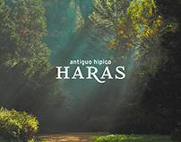 Antiguo Hípico Haras