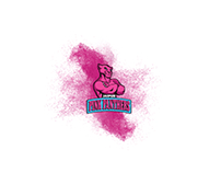 Jaipur Pink Panthers - Official Website