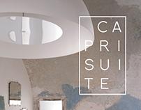 CAPRISUITE _ Branding
