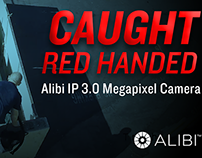 Caught Red Handed with Alibi IP 3.0 MP Security Camera