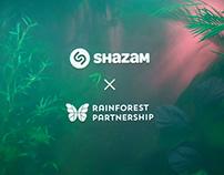 RAINFOREST INSTALLATION — Shazam