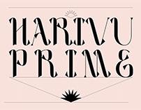 Harivu Prime : A Premium Typeface | Font
