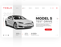 Tesla Models Test Drive