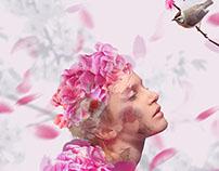 Blossom - Photomanipulation