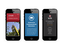 WPI Strategic Plan