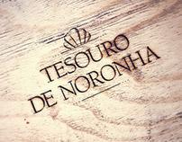 Identidade Visual - Tesouro de Noronha