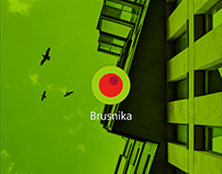 Brusnika | mobile app