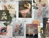 """Pandora's Box"" Collection for Joe's Blackbook"
