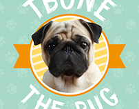 Tbone the Pug Wallpapers