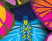 Exhibición Jardin de Mariposas