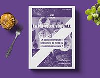 Mémoire BTM - Pâtisserie végétale
