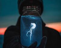Photo Manipulation Jellyfish