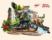 Reborn - 'Royal Enfield Classic 350'