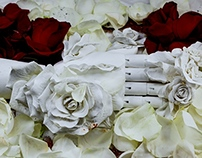 funeral of beauty
