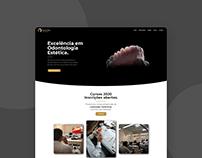 Mauricio Avila - Website