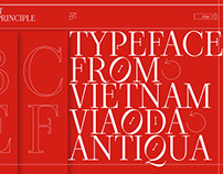 Viaoda Typeface (Libre) - Free on Google Fonts