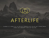 AFTERLIFE | Slide Deck Sample (LWC)
