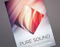 Pure Sound Flyer