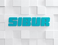 Sibur | Amur Gas Chemical Complex