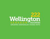 CAMPANHA ELEITORAL -  SENADOR WELLINGTON FAGUNDES - FB
