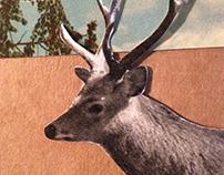 rso196, reclaime the streets: deer (handmade collage)