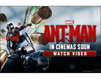Ant-Man International Banners - Flying Art