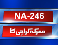 By-Election 2015 NA-246 Packaging