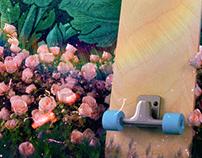 Skate & Roses
