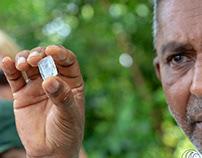 Gems of Sri Lanka !