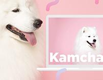 #KAMCHATKA