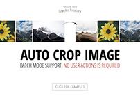 Auto Crop Image — $5