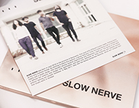Music Album | SLOW NERVE
