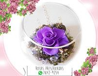 Arreglos de Rosas Naturales Preservadas