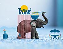The Blue Trunk | Brand Identity