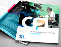 CFI Report