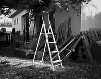 La escalera de la vida