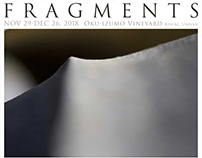 Fragments: Takashima Toshinobu フラグメンツ:高嶋敏展写真展(2018)