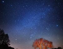 Nightscape / Krajobraz nocny