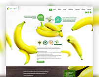 QUIZA - Website