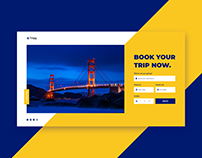 Trip Booking Website UI Concept