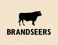 Brandseers Logo Animation