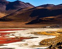 Lagunas: Laguna Colorada