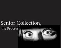 Senior Collect:Process Book
