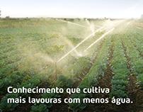 Yara Brasil | Conteúdo para redes sociais