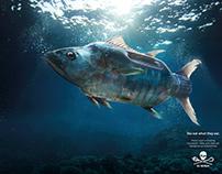 Plastic Fish Campaign