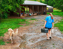 Nashville Loves Food: Noble Springs Dairy Farm