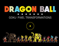 GOKU PIXEL TRANSFORMATIONS