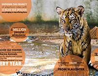 WSPCA Annual Report