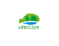 LifeScape. Visual Identification